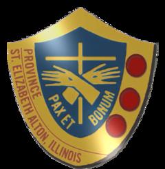 FSGM Shield